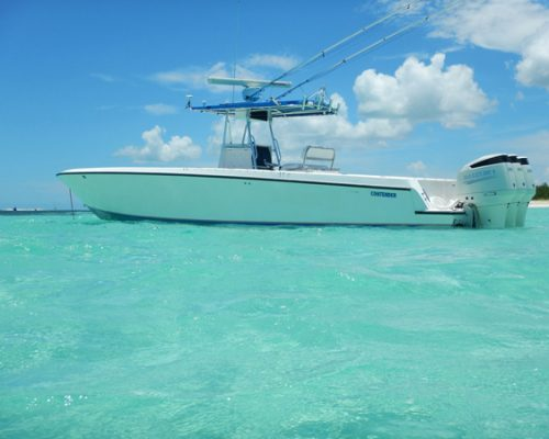 Searok-Fishing-Charters-Contender-3