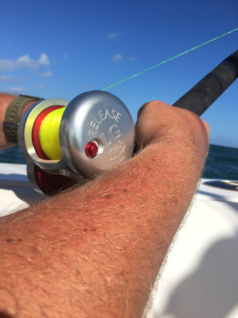 Ponce inlet offshore fishing report searok sport fishing for Deep sea fishing daytona