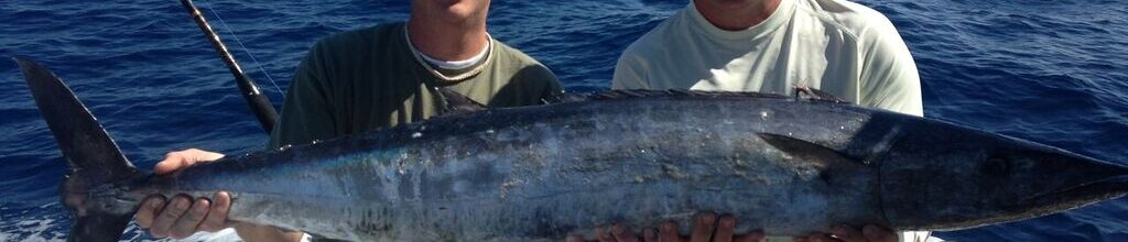 Wahoo Season with Searok Charters