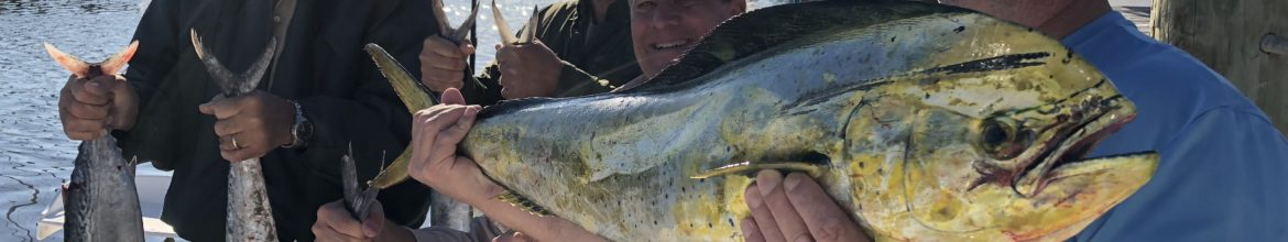 New Smyrna Beach, Ponce Inlet & Daytona Beach Offshore Fishing Report by Capt. Nick
