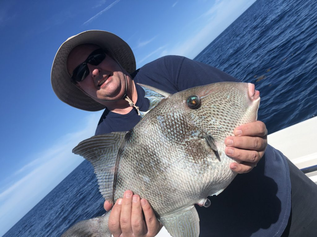 ponce inlet offshore fishing charters